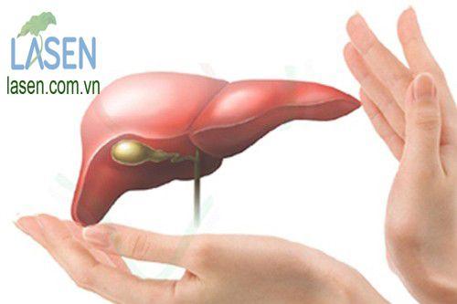 thảo dược tốt cho gan, bảo vệ gan