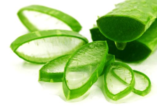 Gel nha đam chứa nhiều dưỡng chất tốt cho vùng kín